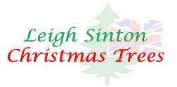 Leigh Sinton Christmas Trees